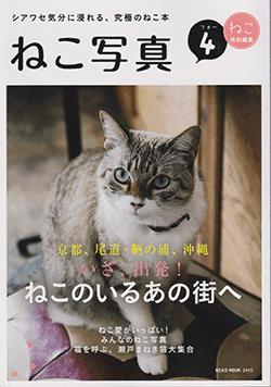 20160311_cat_photo_01_2